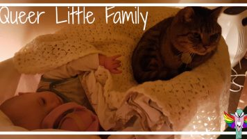 Five Differences Between Cats and Babies