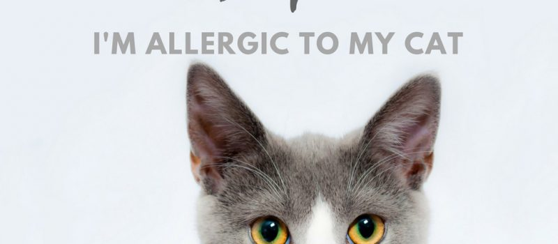 Guest Post: Help! I'm Allergic to My Cat