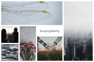 a group of pictures on a white setting - a dragon fly wing, two girls sitting together, two girls holding hands, a city, a cloudy sky and some pink flowers. The words Escaping Reality.